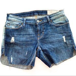 Free People Artisan Shorts B556